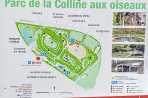 1_colline-oiseaux-plan-0