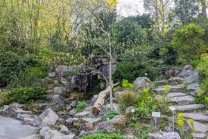 4_Plan-jardin-des-plantes-1